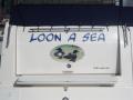 loon-a-seq